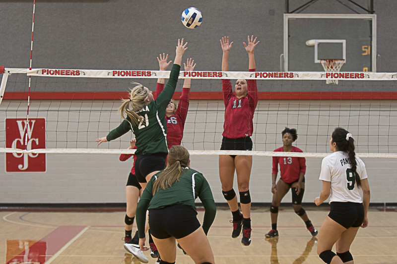Wharton County Junior College outside hitter Sabrina Show (No. 11) of East Bernard leaps high to block a shot during one of the Pioneers' final games of the 2017 season. Assisting with the block is Avery Schroeder (No. 16) of Brenham and pictured in the background is Arianna McCarver (No. 13) of Austin.